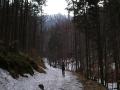 2005-03-Lysá-Hora-Beskydy-025-